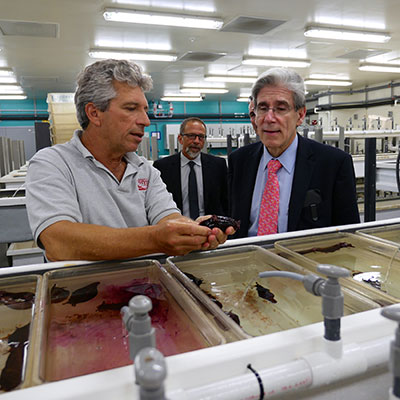 President Julio Frenk visits the Rosenstiel School